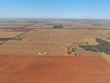 Farmland investment opportunities
