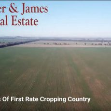 Buying farmland as investment