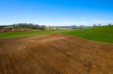 Farmland Investment Cootamundra 340 Kilrush Road