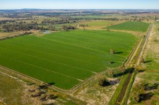 Farmland Investments COVID update